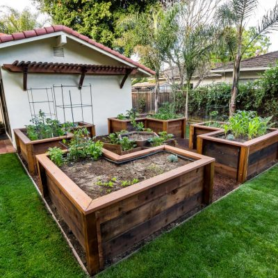 Types of Gardens You Should Have